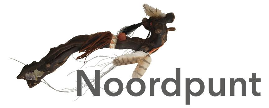 Noordpunt-Mesologie-Paarden als Heelmeesters-Reiki-drachten
